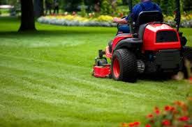 Garden Maintenance Nenagh Tom Knox Landscaping and Garden Maintenance