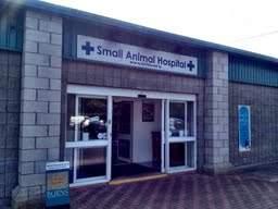 brittas veterinary small hospital hospital