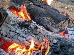 Liston Fuel Logs