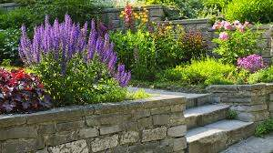 M C Garden Maintenance and landscaping