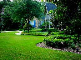 MC Garden Maintenance and Landscaping