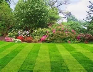 ballyhoura landscaping services